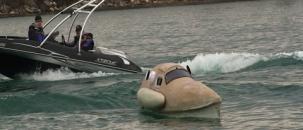 Jet-boat vs. Pedal Boat